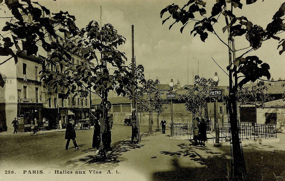 """La Halle aux Vins, mentionnée sur la carte, est construite en 1810, et ne sera définitivement transférée aux Entrepôts de Bercy qu'en 1964. La station s'appelle d'ailleurs  """"Jussieu -Halle aux Vins""""  jusqu'en 1959. C'est désormais l'Université (Paris VI et Paris VII) qui occupe les lieux."""