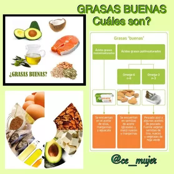 Diferencias Entre Grasas Saturadas Y Grasas Insaturadas Cuadros Comparativos E Imagenes Cuadros C Alimentos Con Grasas Buenas Nutricion Herbalife Nutricion