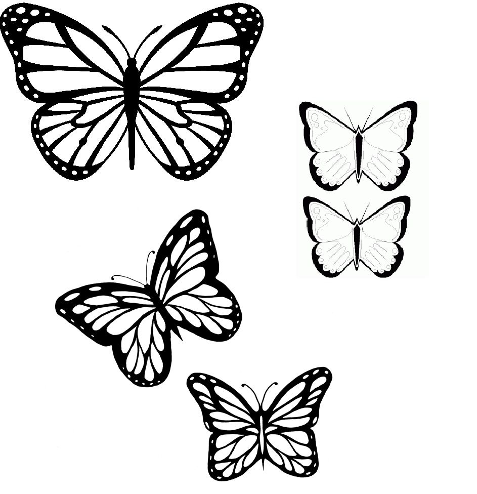 Butterflies Outline (With Images)