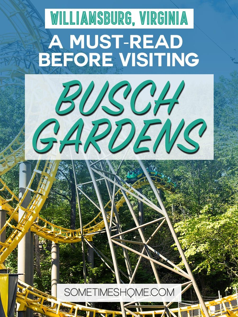 Busch Gardens Can You Bring Food