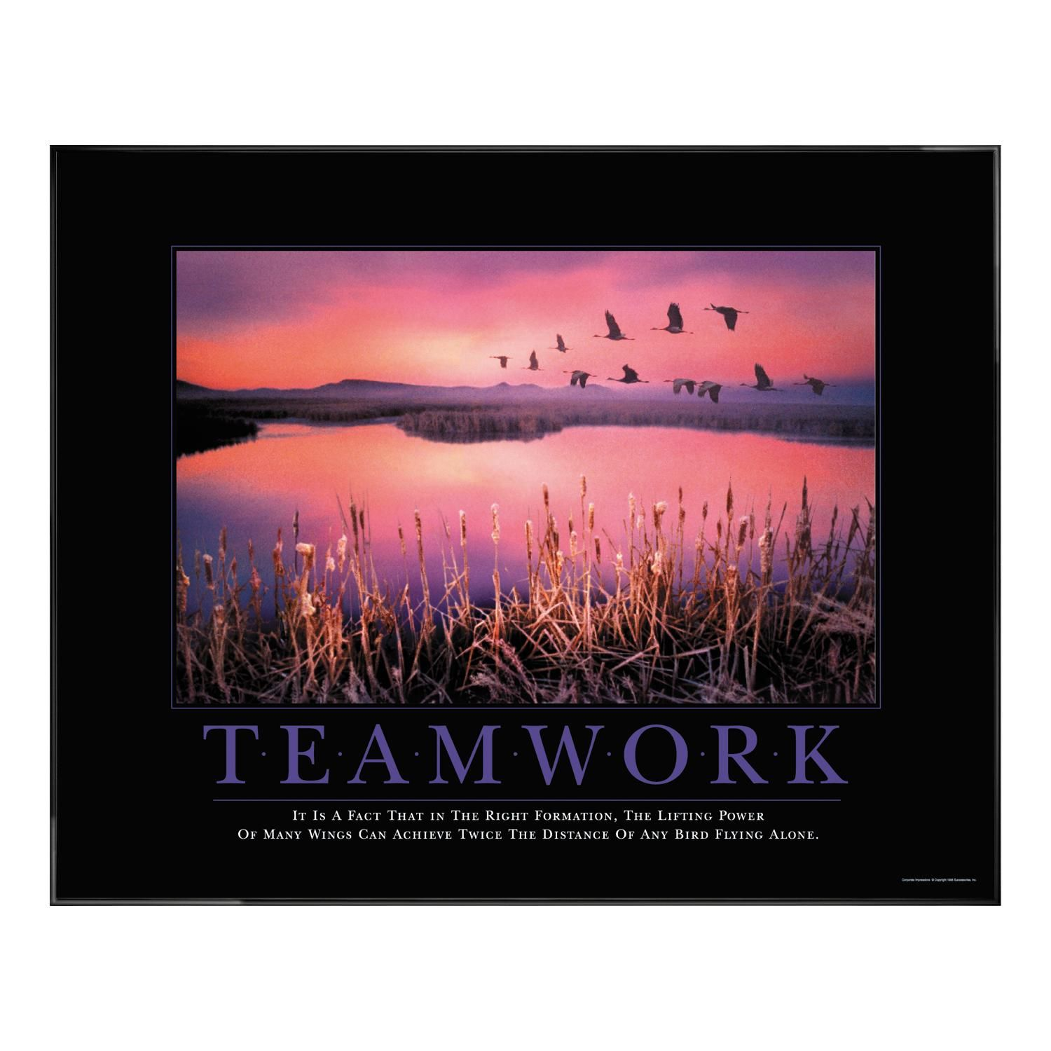 Motivational Inspirational Quotes: Teamwork Framed Motivational Print