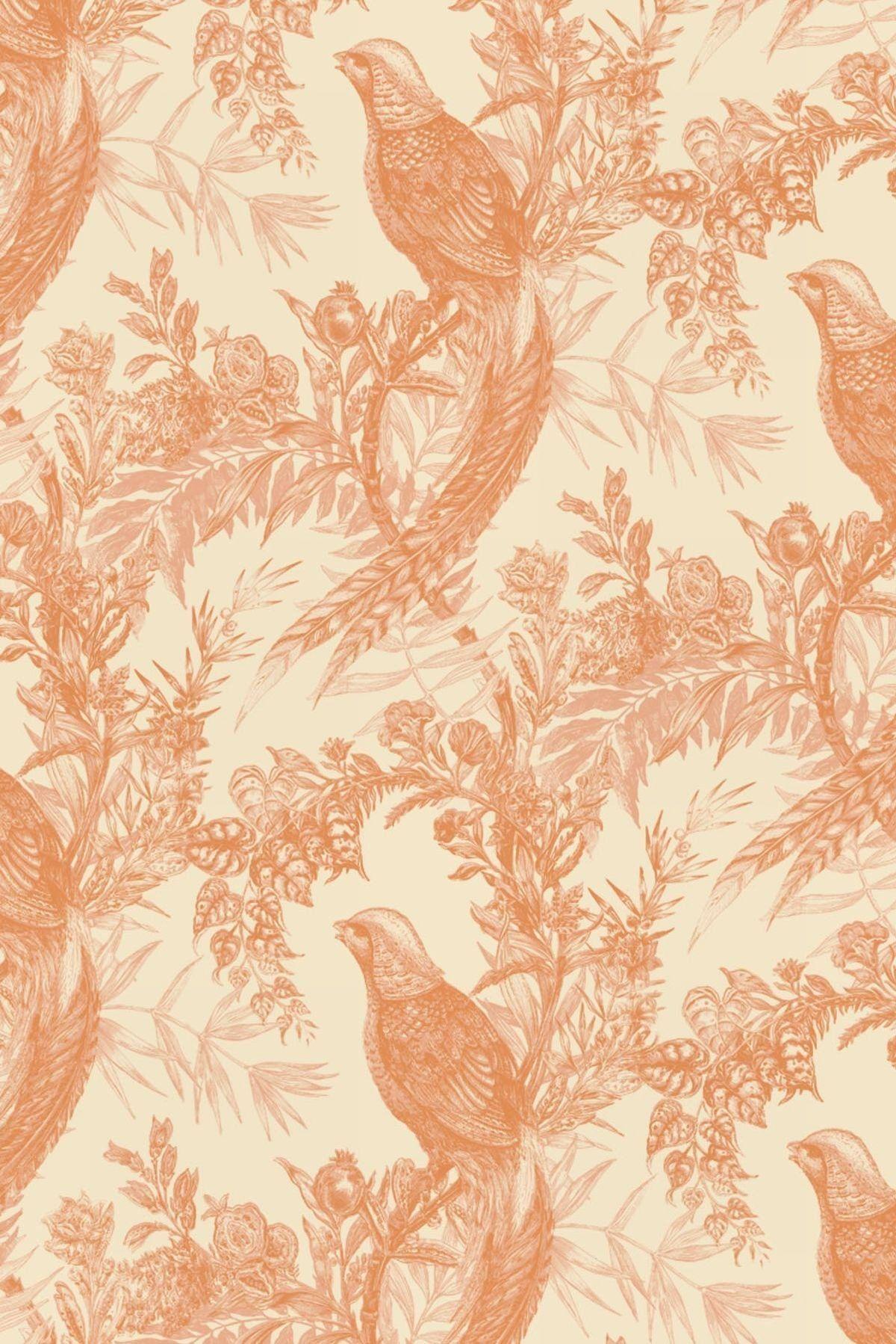 Pheasant Wallpaper Wallpaper Mural Wallpaper Timorous Beasties