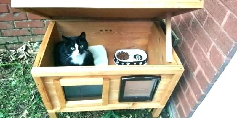 How To Build An Outdoor Cat House Heated Outdoor Cat House Ideas Image Gallery Of Outside Plans Decorating Heated Outdoor Cat House Outdoor Cat House Cat House