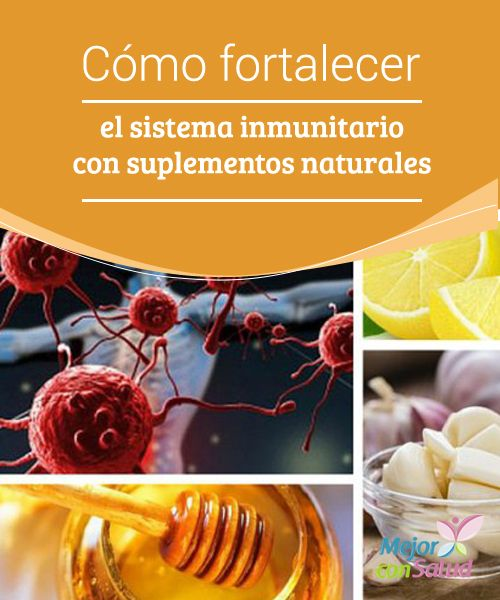 C mo fortalecer el sistema inmunitario con suplementos naturales en este art culo te decimos - Alimentos para subir las defensas ...
