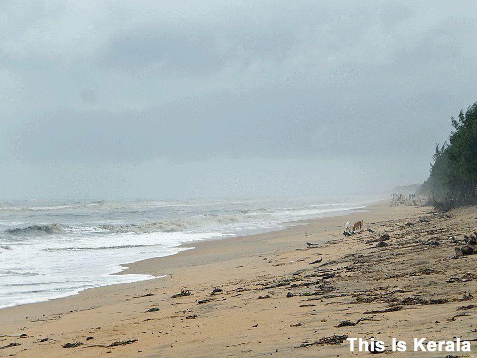 valapad beach thrissur kerala india beach places outdoor valapad beach thrissur kerala india