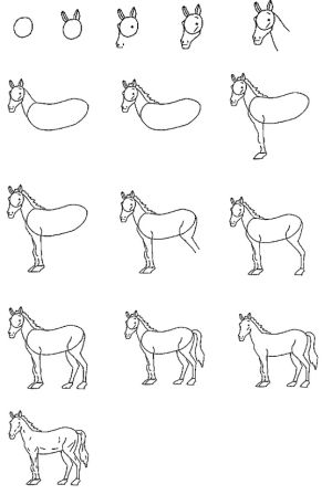 Step by step instructions on drawing how to draw a horse by bessie