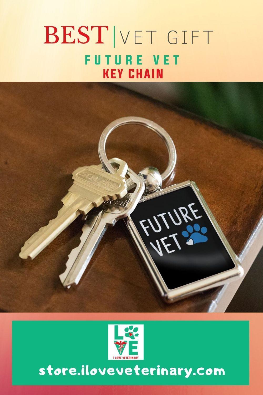 Future Vet Keychain in 2020 Vet student, Vets, Vet assistant