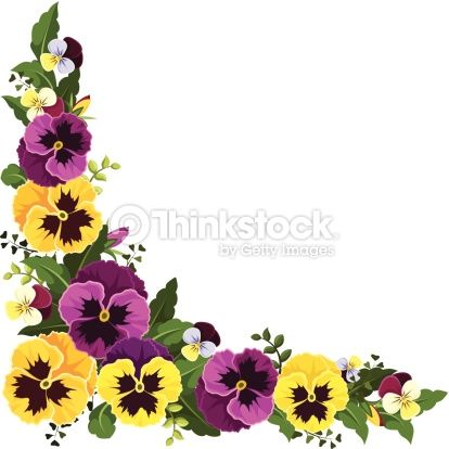 Vector Corner Background With Yellow And Purple Pansy Flowers And Pansies Flowers Pansies Art Pansies