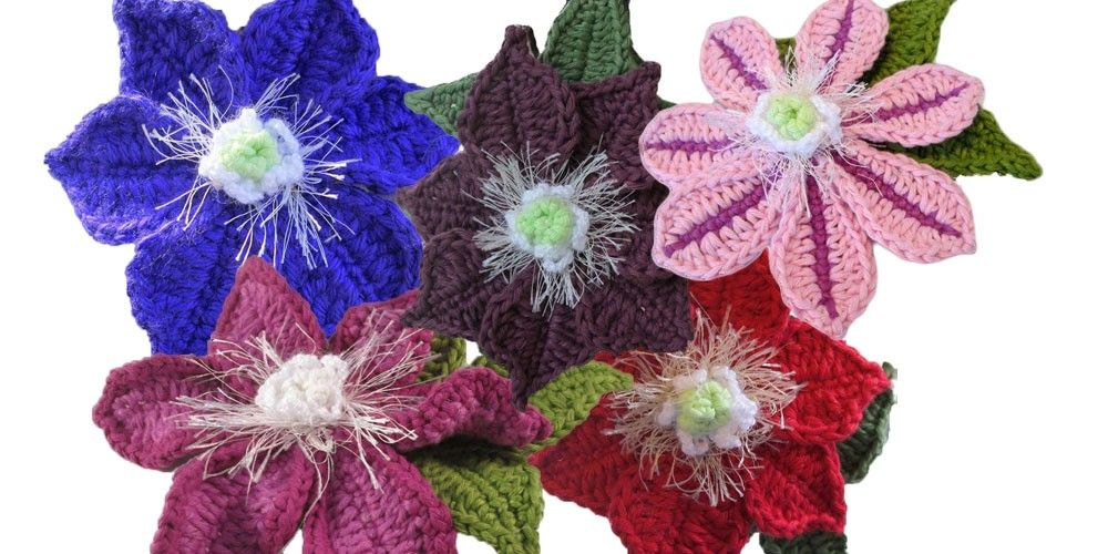 Clematis pd pattern