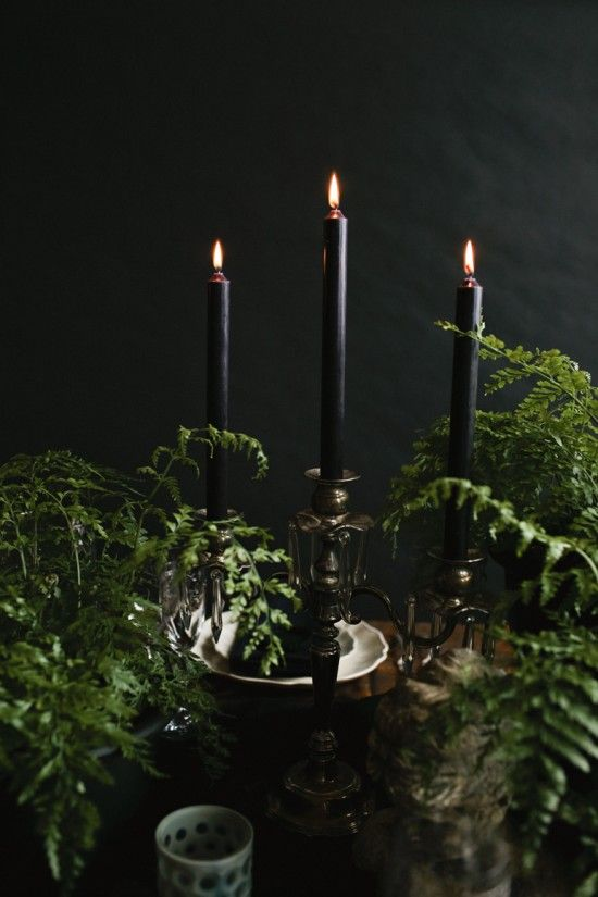 Halloween Tabletop :: Midnight in the Garden - coco kelley