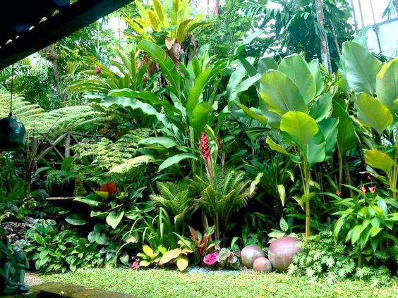 The Tropical Garden Is A Garden Concept Designed To Resemble A Tropical  Forest. Plants Commonly Used Or Characteristic Of A Tropical Garden Is A  Plant That ...