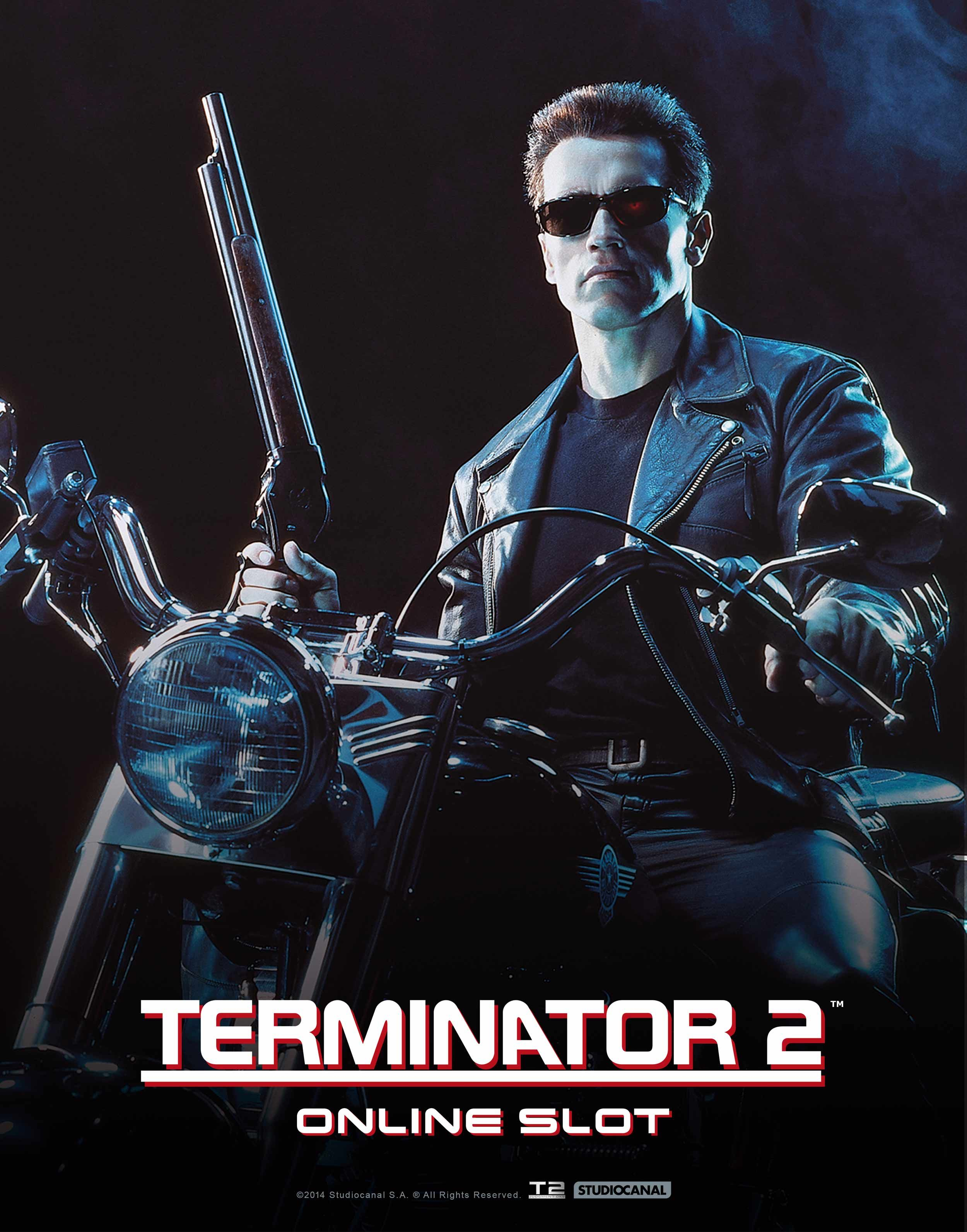 Terminator 2 Classic Movie Poster 34 in x 22 in Fast Shipping