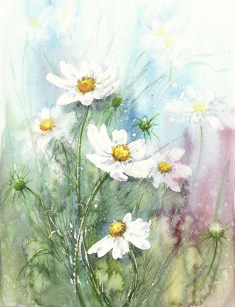 успел цветы ромашки картинки акварель дружелюбна игрива