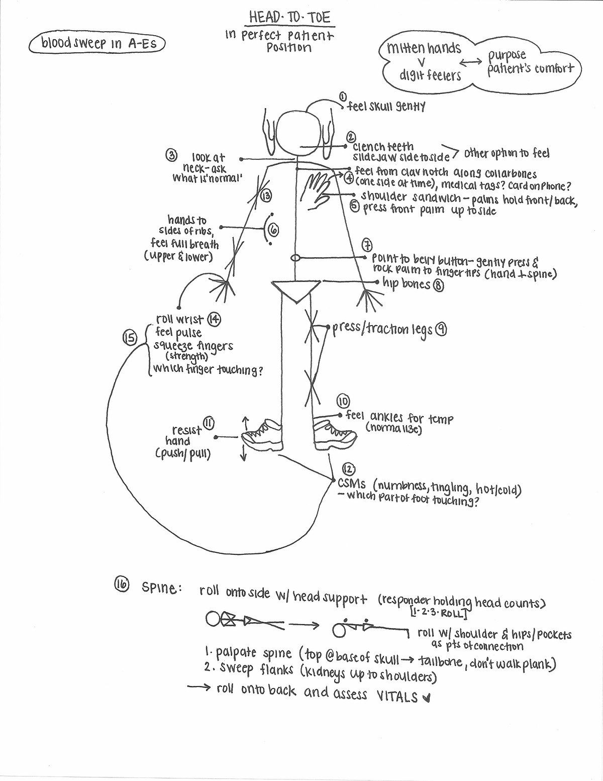 Patient Assessment Visualizing The Head To Toe Exam Assessment Exam Medical History