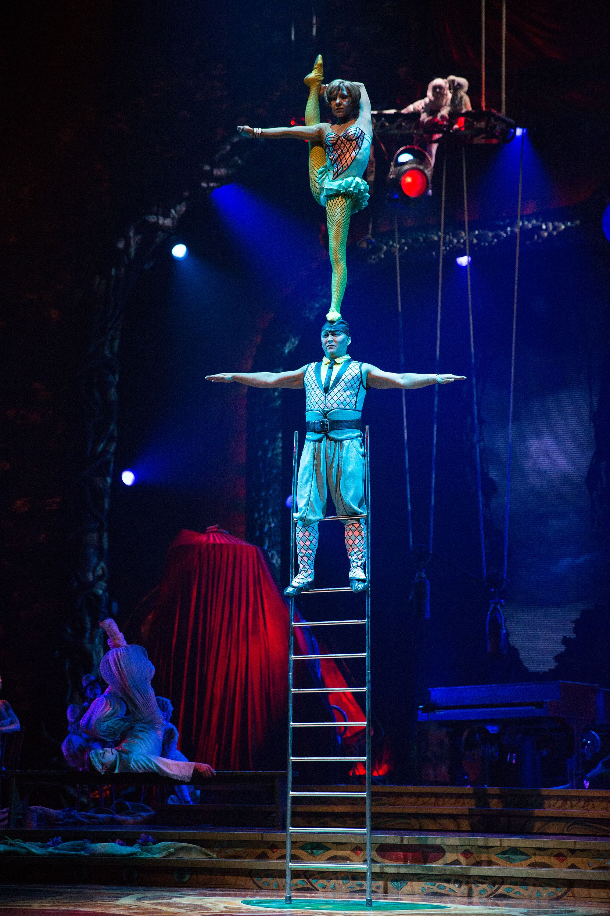 Review of the Cirque du Soleil show Toruk – The First Flight Toruk Pinterest