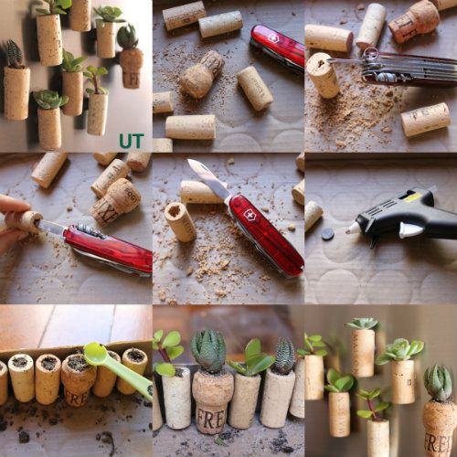 diy magnets bouchons en li ge pour succulentes bouchons li ge pinterest bouchons li ge et. Black Bedroom Furniture Sets. Home Design Ideas