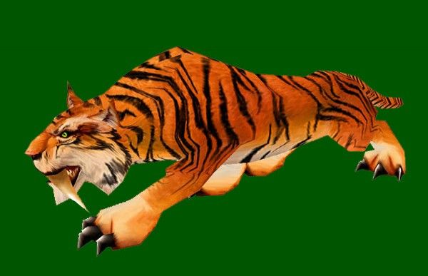 Can Tigers Be Domesticated Riding Tiger Skin Red No Saddle Hunter Pet Model Wow Hunter Pets Tiger Skin Warcraft Pets Pets