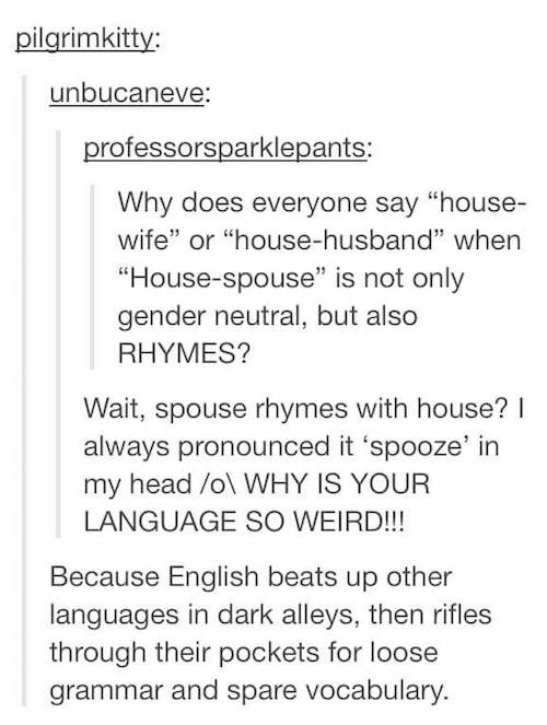 Photo of 20 Times Tumblr Hilariously Explained The English Language | Chaostrophic