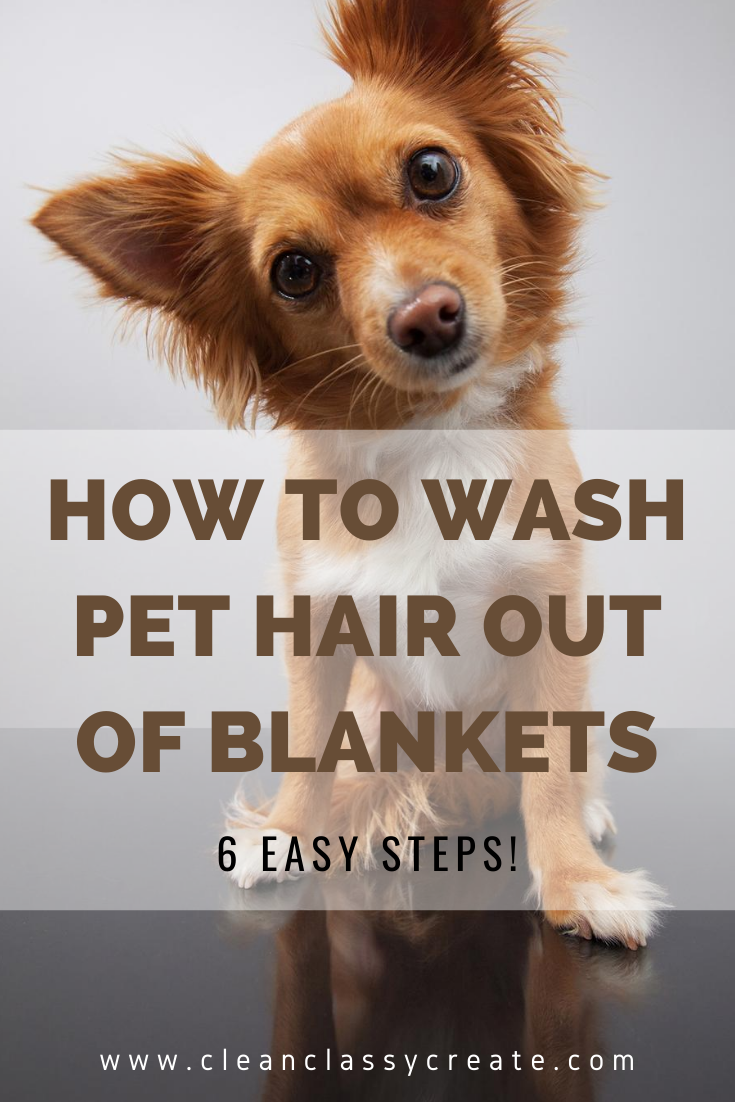 How To Wash Pet Hair Out Of Blankets Pet Hair Pets Pet Cleaning