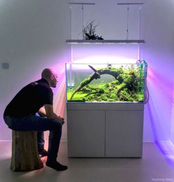 50 Aquascaping Ideas for Inspirations | Fish aquarium ...