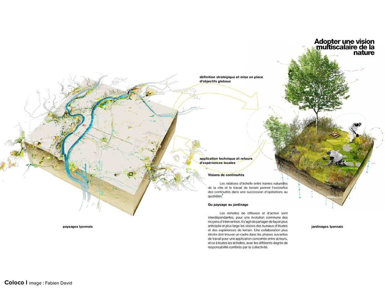Plan de végétalisation1 by coloco
