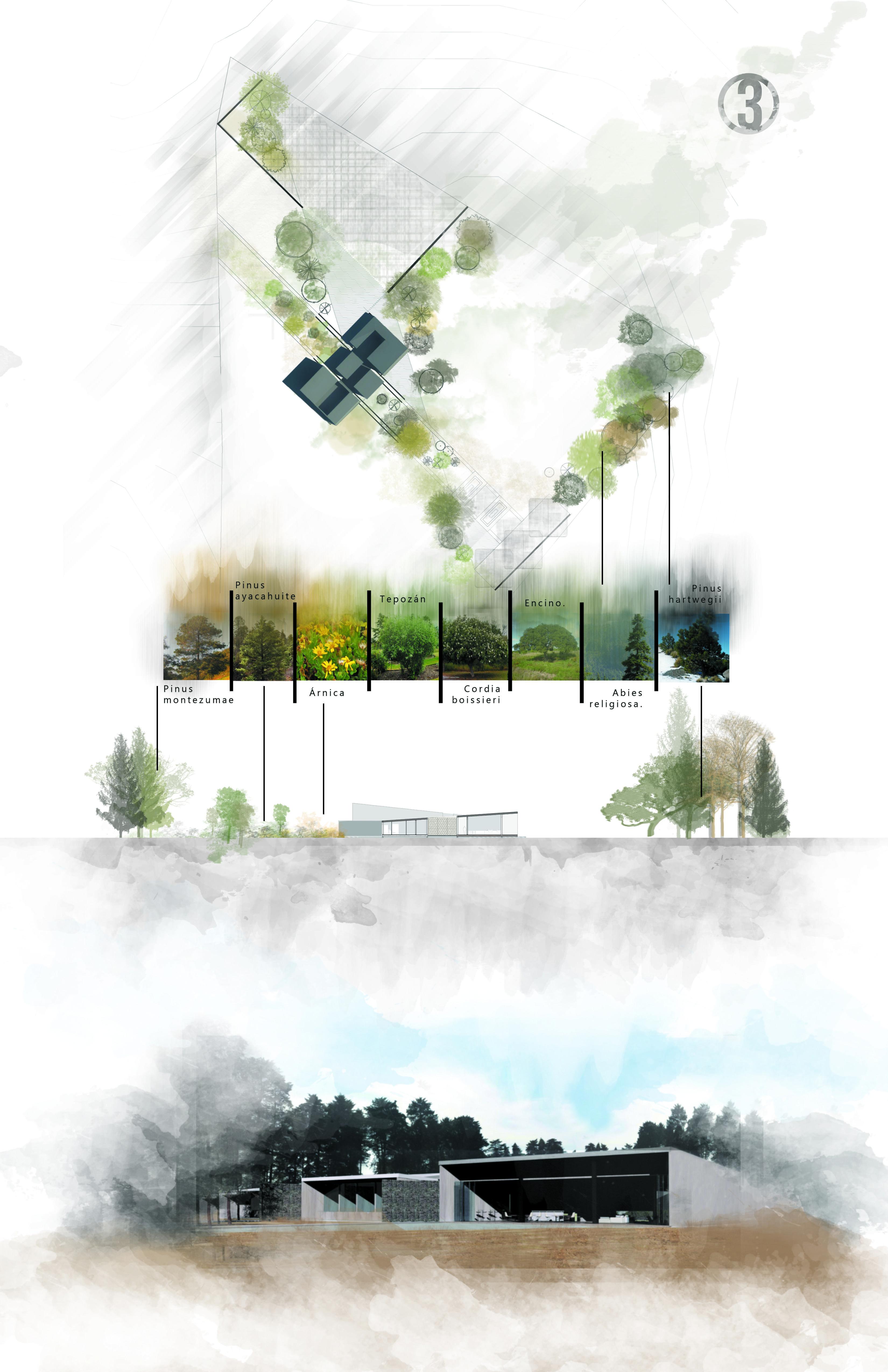Landscape Presentation Board Landscape Architecture Presentation