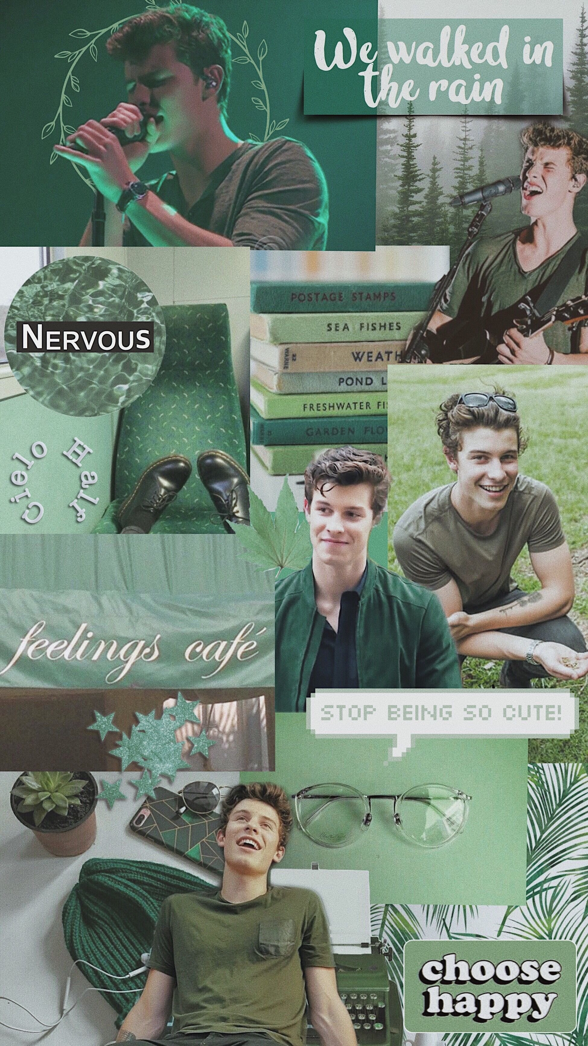 Shawn Mendes aesthetic wallpaper green Shawn mendes