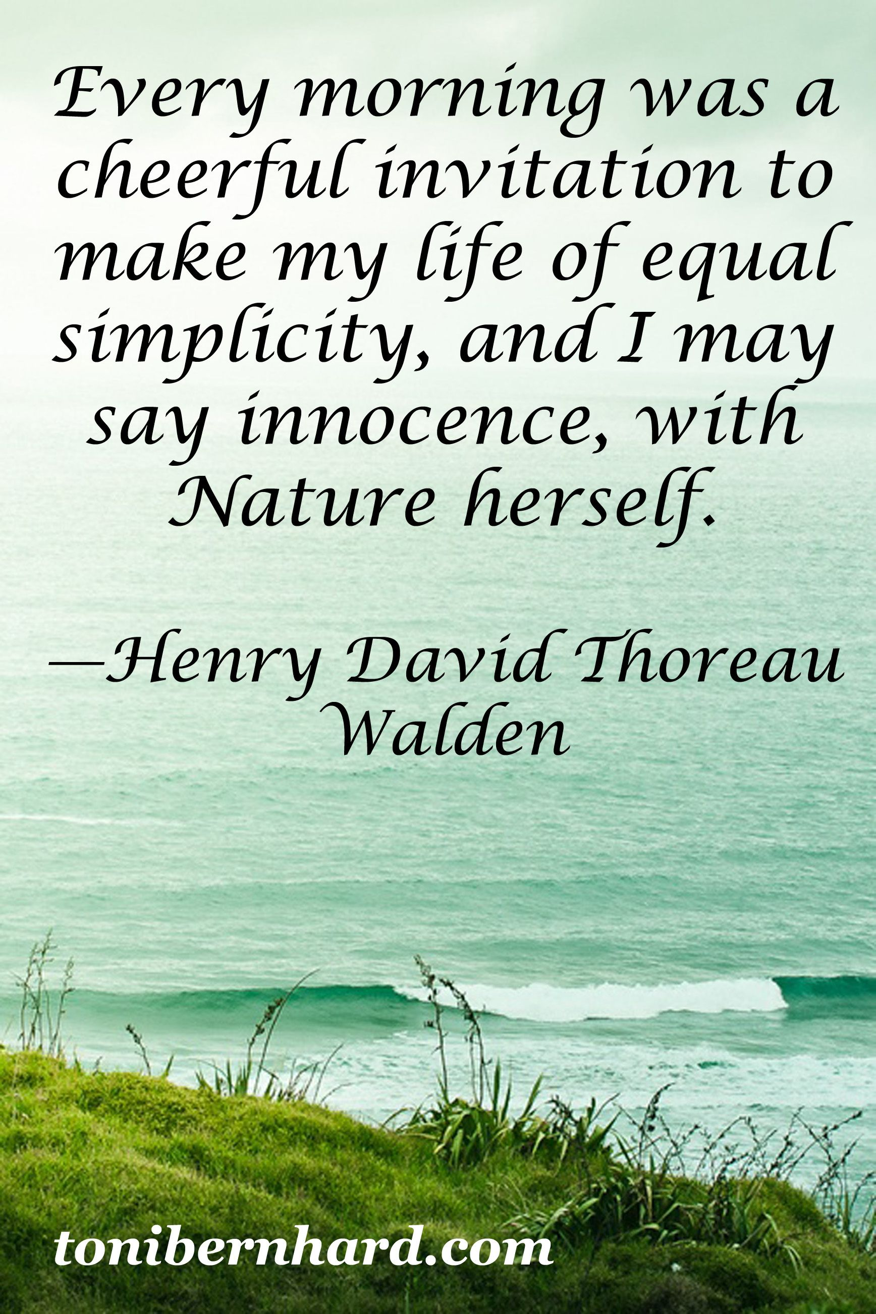 Henry David Thoreau Buddhist Inspired Life Pinterest Henry