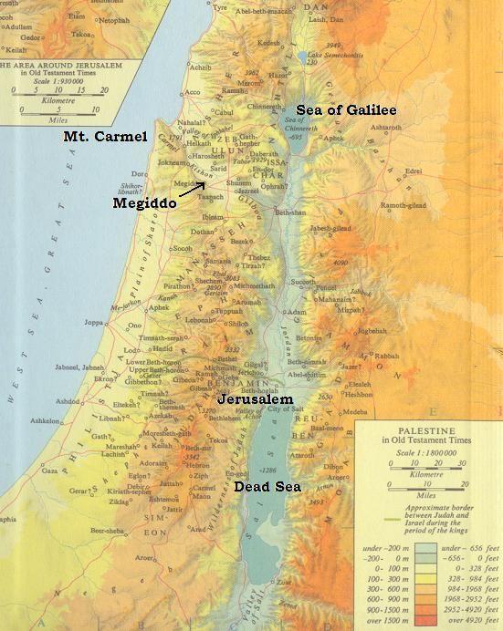 PLO (Palestine Liberation Organization)