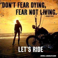 Harley Davidson Love Quotes Adorable Let's Ride  Motorcycle Love  Harley Davidson  Pinterest