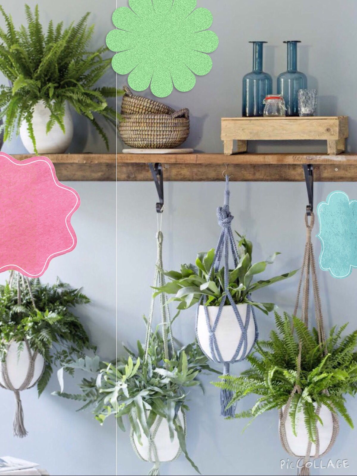 DIY Ideas - Hanging Garden  Nice, love this!  by Intratuin.nl