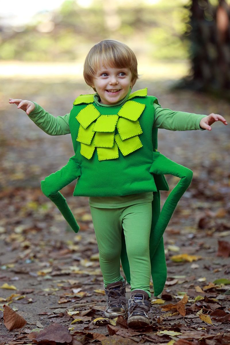 Stink Bug costume for my son Logan this year. | sets and costumes ...