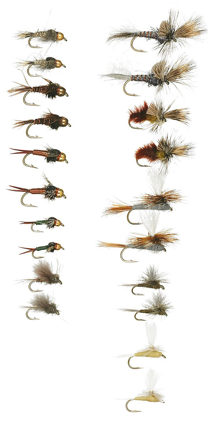 Freshwater fish life cycle - White River Fly Shop 20 Piece Mayfly Life Cycle Fly Assortment