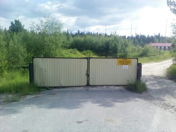 Puerta en medio del campo