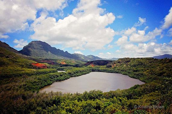 Nature Tropical Landscape H From Silverbirdboutique On Wanelo Hawaii Photography Tropical Landscaping Fine Art Prints
