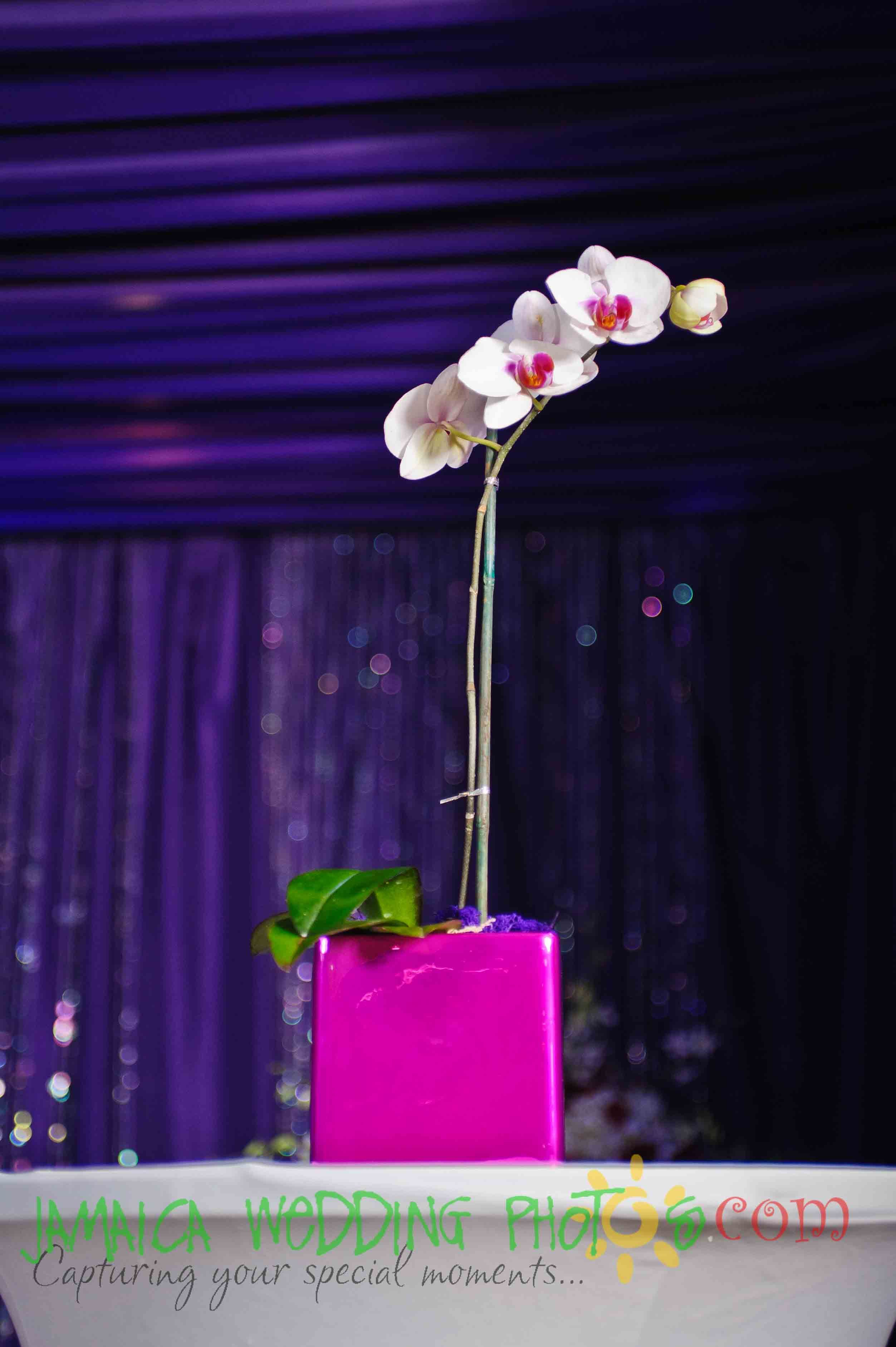 Hot Pink And Purple Wedding Decor  Decor By Helen