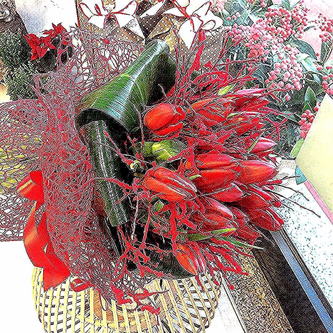 La loro semplicità ❤️ #loveyou #rossonatale #amore #tulip #buoncompleanno #christmasdays #decor #bouquets #xmas #anturiumalghero #florist #regalo #gift #shoppingonline #tulipano #alghero #instagood #instachristmas #instaphoto #artista #colors #instaday #solocosebelle #flowerslovers #allready #beautiful #sardinia #dimarcoalghero #dimarcogroupalghero@anturium_fioreria