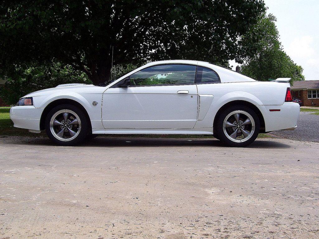 My 2004 Mustang Gt Mustang Gt Ford Mustang Gt Mustang