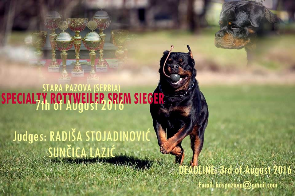 Specialty Rottweiler Srem Sieger Moj Ljubimac Video
