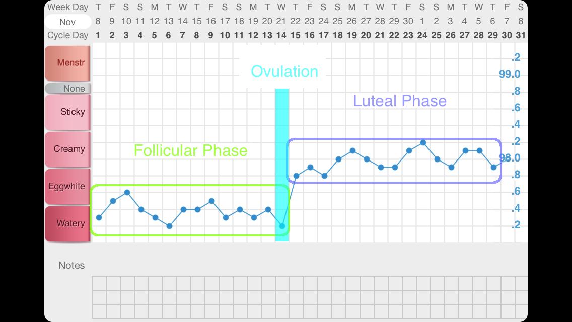 Basal Body Temperature 101 Basal Body Temperature Bbt Chart Basal Body Temperature Chart
