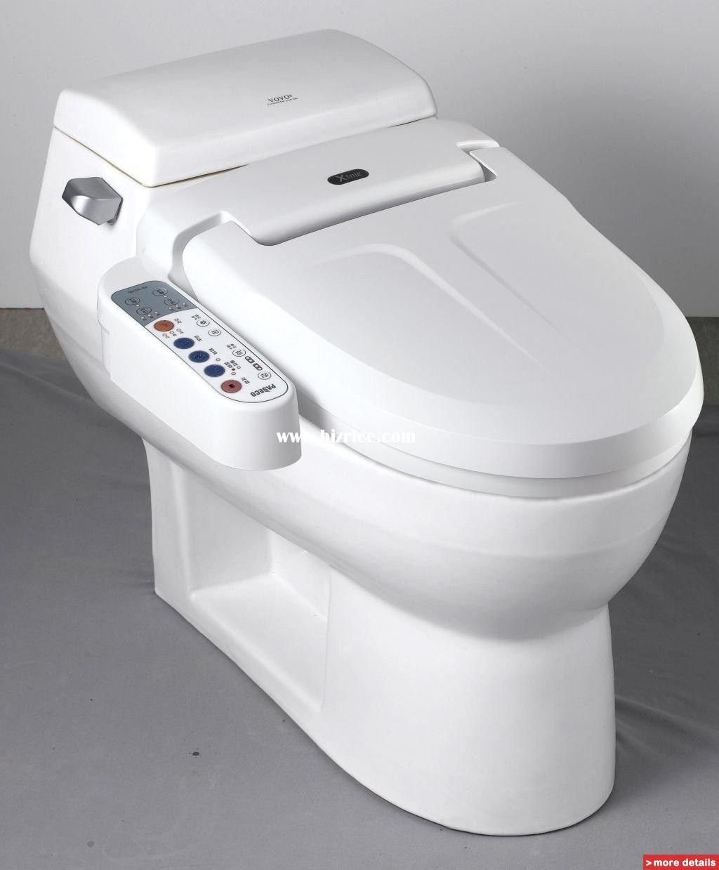 Toilet Bidet Handicapped Guide To Toilet Bidets Bidet Toilet Seats And Bidet Attachments Bidet Bidet Toilet Bidet Toilet Combo
