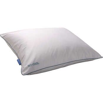 Sleepbetter Iso Cool By Isotonic 2 Pack Polyester Pillow With Outlast Pillows Mattress Covers Best Mattress