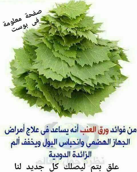 Pin By Neven Khorshed On وصفه صحيه Vegetable Benefits Health And Nutrition Health Diet