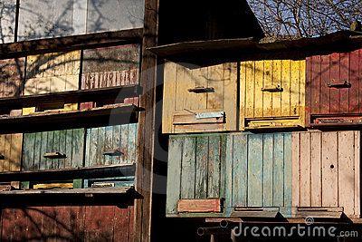 Vintage hives?