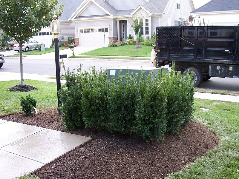 Disguising Outdoor Utility Bo Solutions