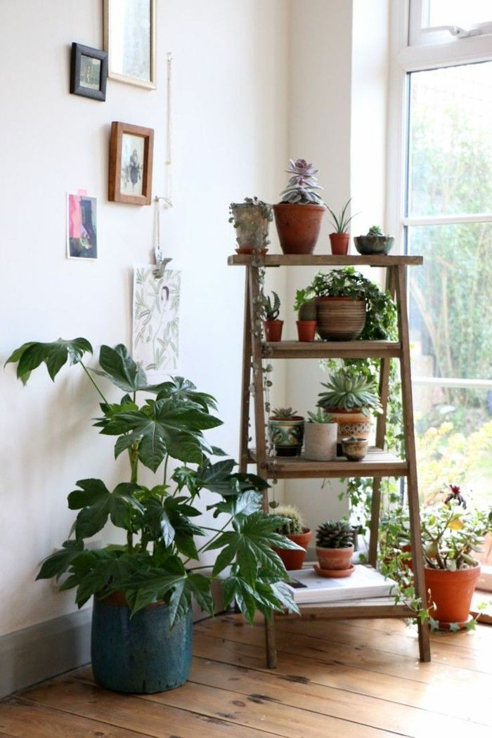 Inspirierende Dekoideen kleiner InnenGartenbereich  Einrichtungsideen  Wohnzimmer pflanzen