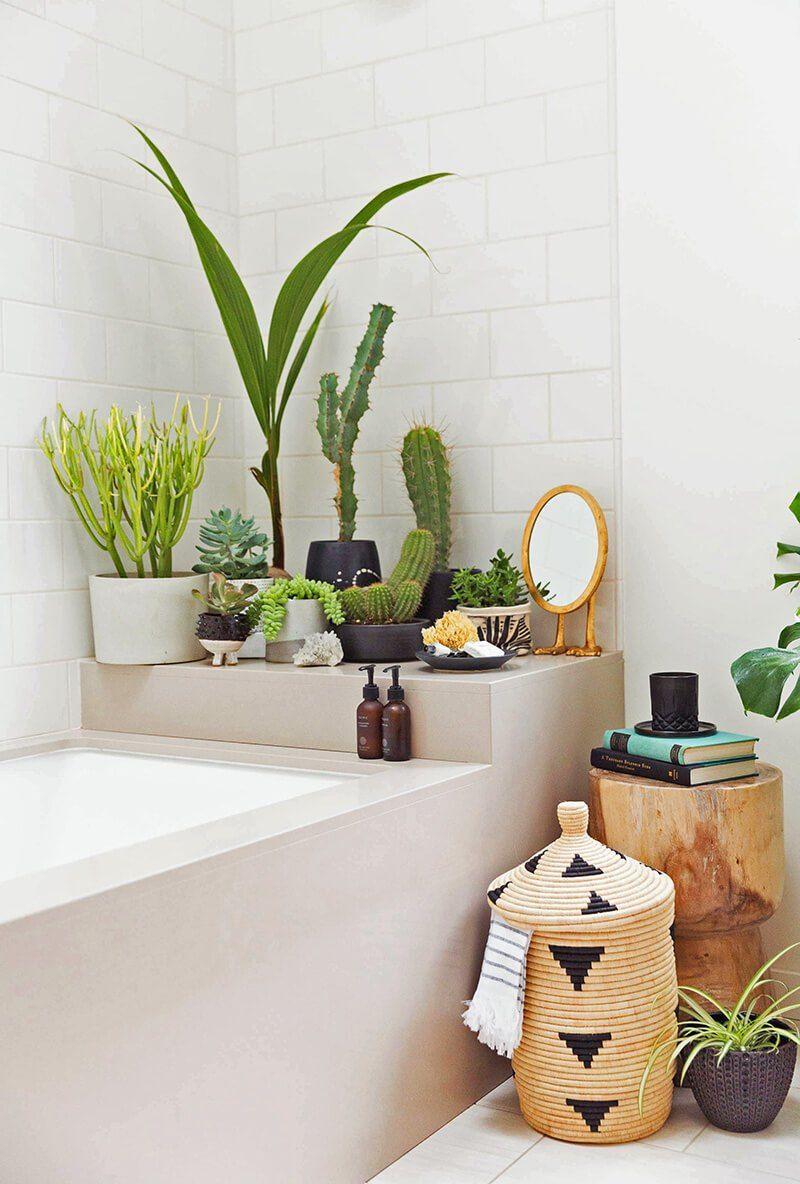 décorer la salle de bain | maison | plante salle de bain, salle de