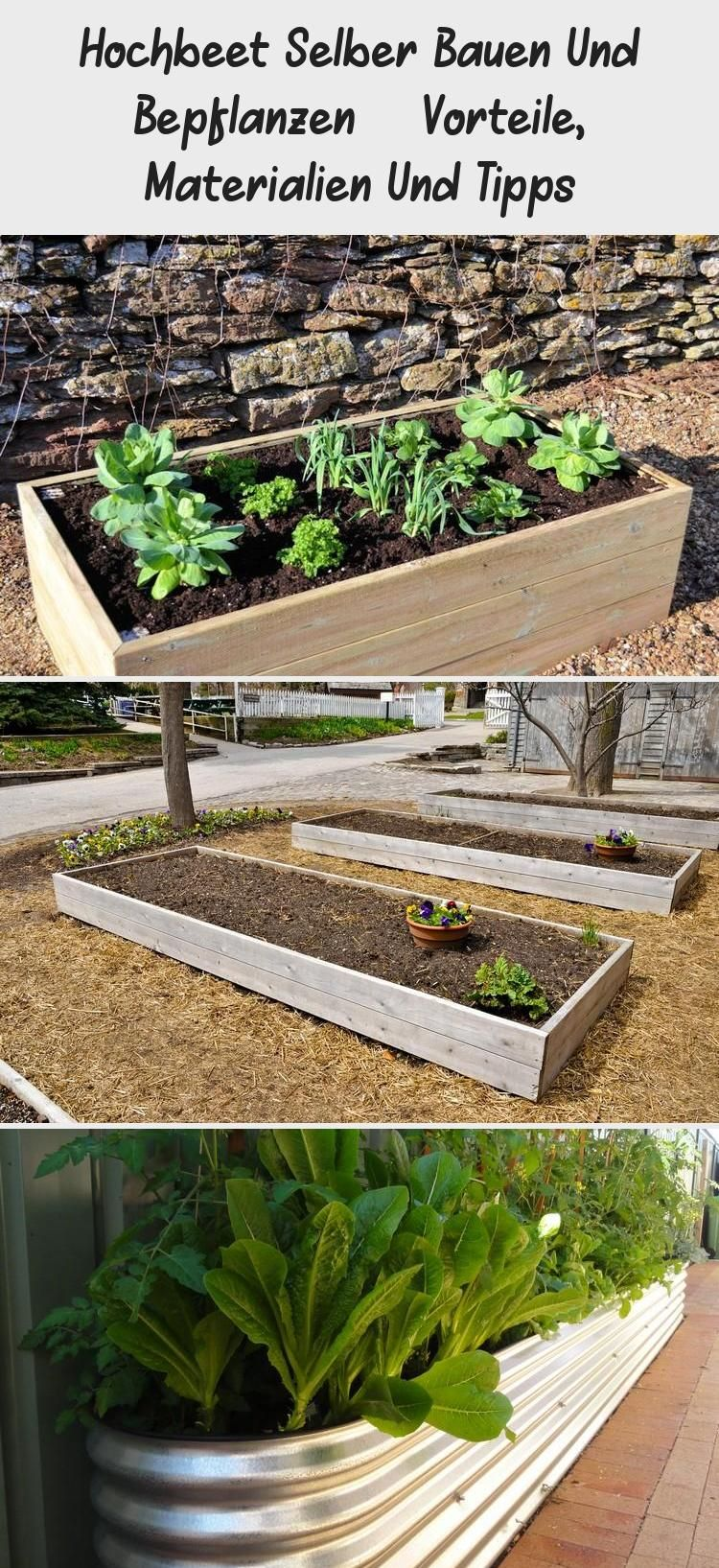 Hochbeet Selber Bauen Und Bepflanzen Vorteile Materialien Und Tipps In 2020 Plants Garden