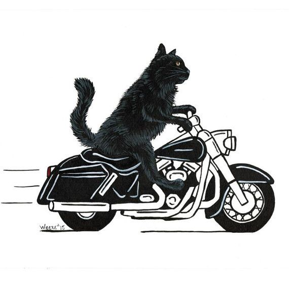 Custom Pet Portrait Caricature Pet Cartoon Your Pet Riding