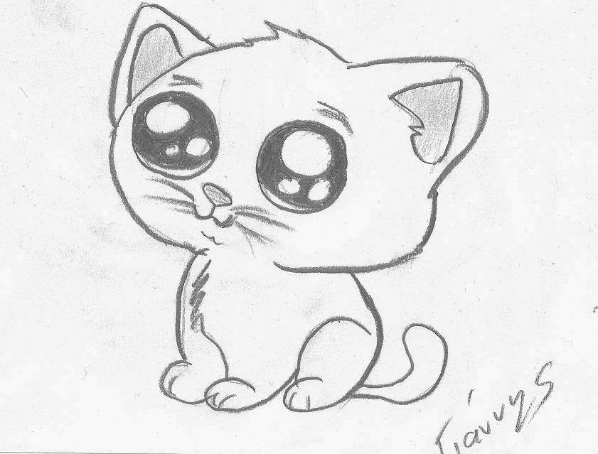 Cute kitty sketch